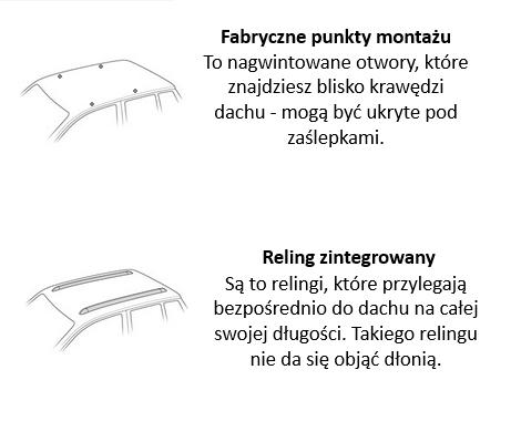 rodzaje dachów w bagażnikach samochodowych